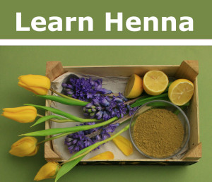 Crate of yellow tulips, blue hyacinths and henna for hair and mehndi from hennacat online henna shop