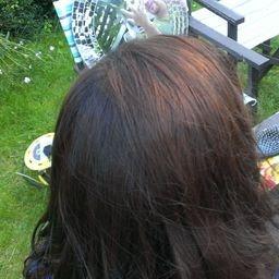 uy henna for hair and mehndi from hennacat online henna shop