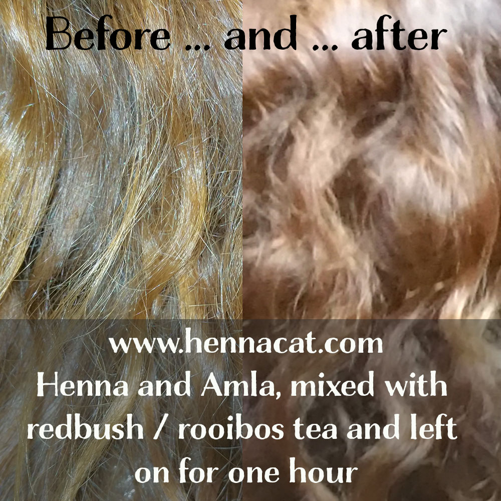 Henna For Hair Beautiful Strawberry Blonde Using Hennacat